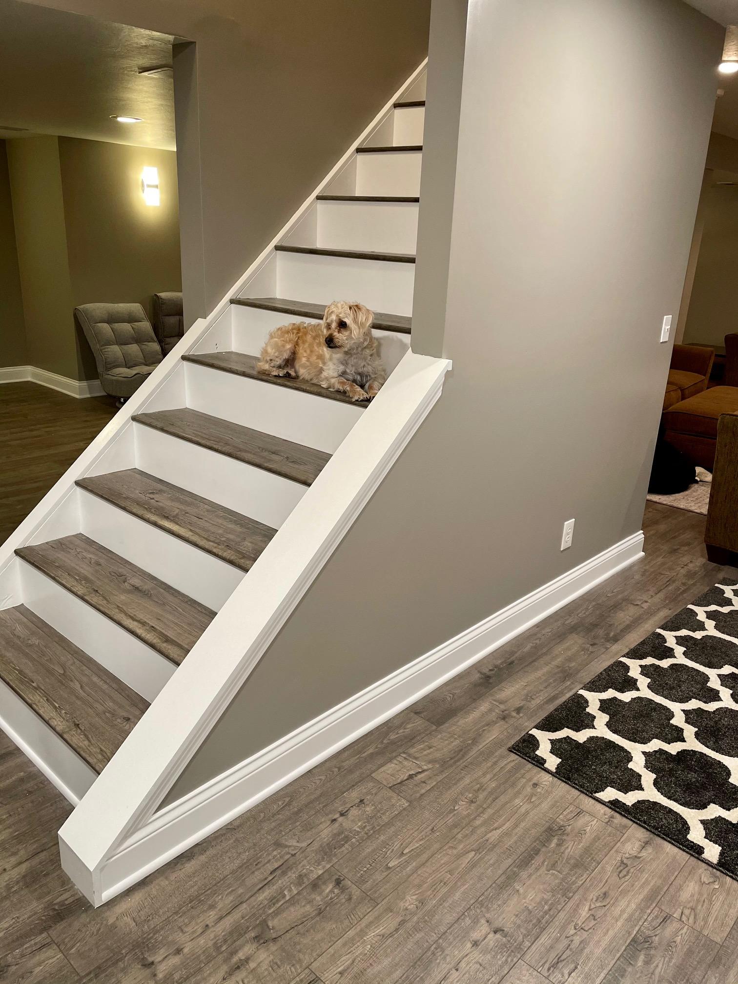 Laminate Flooring Installation on Stairs